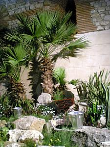 open garden area in Diocletian Palace basement
