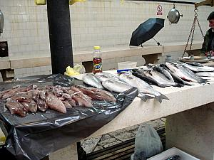 Inside the fish market!