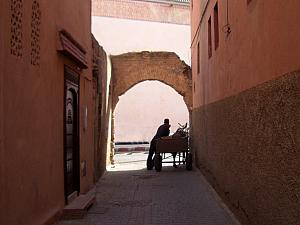 At the end of the street, another donkey cart.