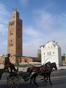 Koutoubia mosque again. Many horse carriages were available near the main square, but carriage ride in 100+ degree heat did not seem very appealing.