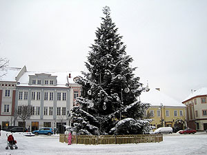 Christmas tree at Vilnius, Lithuania