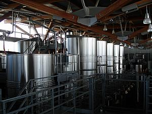 Fermenting tanks in the winery