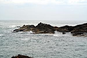 Punta del Esta - Punta Ballena -- look for the sea lion!