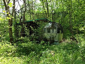 During our trek, we came upon this abandoned trailer home lost in the woods. It must have been sitting here for decades, completely overgrown around it. A little unnerving ;)