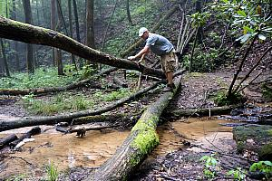 Chad showing off his agility, avoiding this rushing river