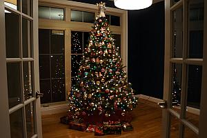 Our Christmas tree, in our still-empty study. Good spot for the tree, though!