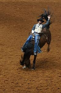 Fort Worth Rodeo and Stock Show
