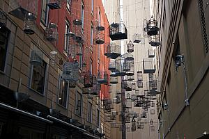 A public art installation: empty bird cages symbolizing the birds that were forced to migrate with the growth of Sydney.