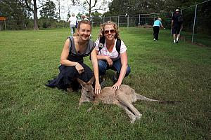 The sanctuary also has a big pasture with dozens of Kangaroos that you could freely pet and feed. They were friendly and had very soft fur.