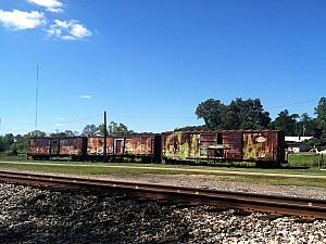 Stopping by some abandoned railroad cars during our bike ride from Athens to Nelsonville.