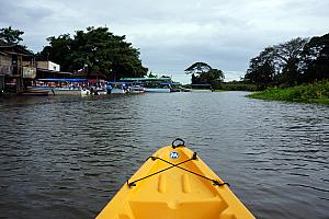 Saturday, December 14: Kayaking in Las Isletas on Lake Nicaragua.