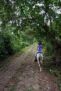 Riding up Totoco's driveway -- the road to the ecohotel was completely paved, but the 1.25 mile driveway -- completely uphill -- was not. This dirt/rock road took about 10 minutes to surpass on the road, and 30 minutes on our horses.