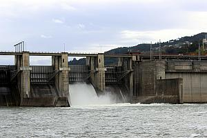 March 28: time for another dam!