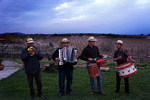 These musicians were fun to listen to. It's hard to go wrong when an accordion is involved.
