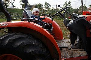 At Gorman Farm - Capri is driving the tractor!