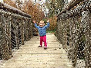 Capri having fun on a bridge!